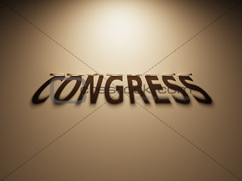 3D Rendering of a Shadow Text that reads Congress