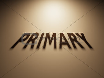 3D Rendering of a Shadow Text that reads Primary