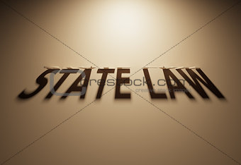 3D Rendering of a Shadow Text that reads State Law