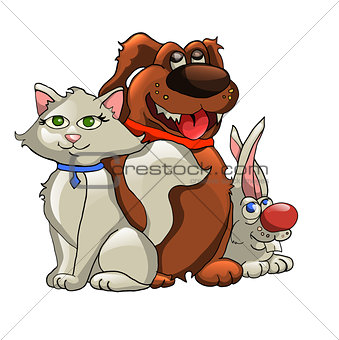 cat, dog, rabbit isolated on white background. vector illustration