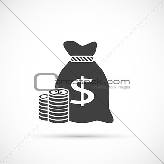 Money bag with coins icon