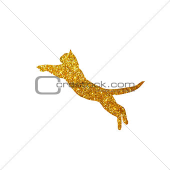gold cat with glitter, silhouette, isolated, vector illustration