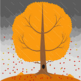 Autumn tree in the rain and falling leaves on the background a stormy sky