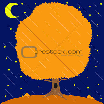 Autumn tree under the rain in the night star sky and month