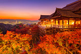 Kyoto in Autumn
