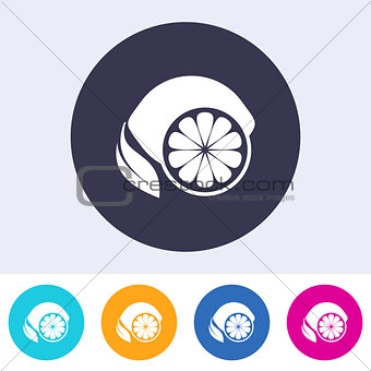 Single vector lemon icon