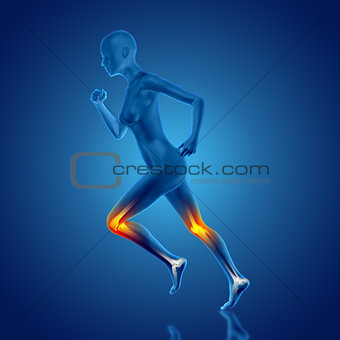 3D female medical figure running with knee bones highlighted