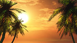 3D palm tree landscape