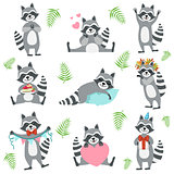 Cute Raccoon Character In Different Situations Set