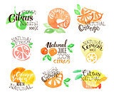 Fesh Citrus Juice Promo Signs Colorful Set