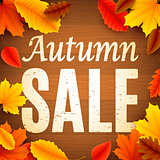Autumn Sale Anouncement