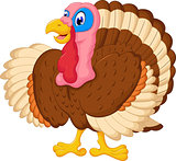 cute turkey cartoon for your design