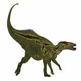 Shantungosaurus Dinosaur Tail