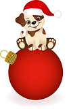 Cute dog on Christmas ball