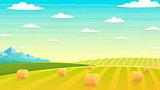 Natural landscape hay field