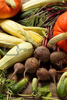 Autumn harvest vegetables