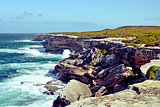 Rugged coastal cliffs of Cape Solander, NSW