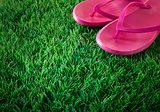 Flip flops on lush grass