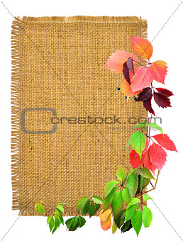 Branches and burlap