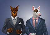 doberman and bullterrier dressed up in office suit