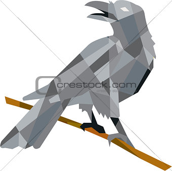 Crow Perching Looking Back Low Polygon