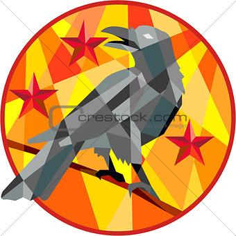 Crow Perch Stars Circle Low Polygon