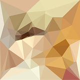 Corn Yellow Beige Abstract Low Polygon Background