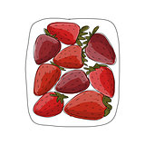 Strawberry, sketch for your design