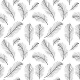 Bird Feather Hand Drawn Seamless Pattern Background Vector Illus