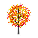 Autumn Tree Background Vector Illustration