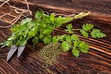 Fresh and dry coriander herb.