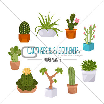 Cactuses and succulents icon set. Houseplants