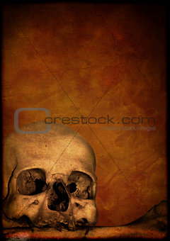 Grunge Halloween background with human skull