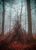 Witch house in the forest with fog