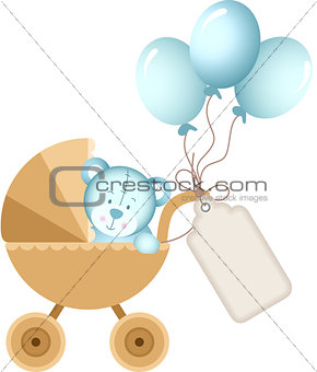 Boy teddy bear in baby carriage with label tag