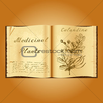 Greater celandine. Botanical illustration. Medical plants. Book herbalist. Old open book