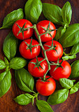 Fresh tomatoes with basil on wooden board