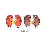 Healthy vs Unhealthy Kidneys Infographic Illustration