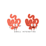 Healthy vs Unhealthy Small Intestine Infographic Illustration