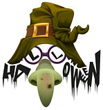 Witchs hat, green nose and glasses accessory for Halloween party