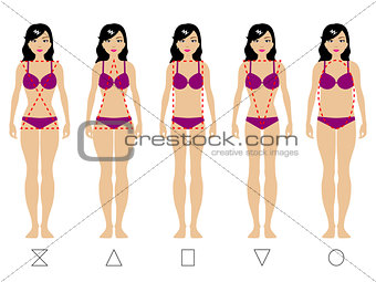 Five types of the female body