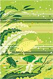 Fish illustration for design.