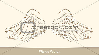 Sketch illustration of wings on white background. vector
