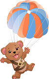 beautiful bear with parachute