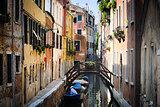 Venezia || Italia