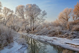 snow landscape with frosted trees and river