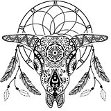 Bull Scull with Dream catcher