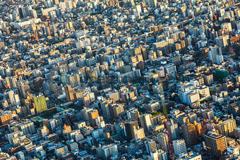Aerial View of the Tokyo City, Japan
