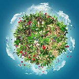 3D globe with wild flowers and clouds