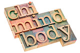chi, mind, body word abstract